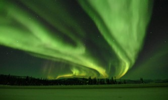 Alaska Wildlife Guide Chena Hot Springs Northern Lights tours 20190301 095134990 i OS2019