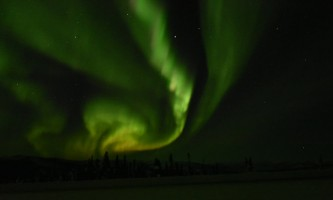 Alaska Wildlife Guide Chena Hot Springs Northern Lights tours 20190301 095838980 i OS2019
