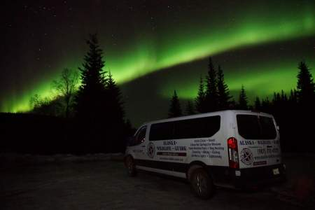 Alaska Wildlife Guide: Chena Hot Springs Northern Lights Tours