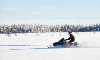 Alaska Wildlife Guide Snowmobiling in Alaska shutterstock 5036262132019