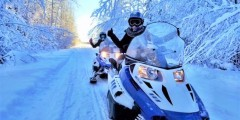 Alaska Wildlife Guide: Snowmobiling in Alaska