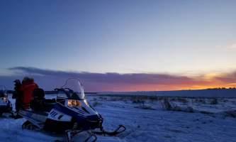 Alaska Wildlife Guide Snowmobiling in Alaska 20190226 232540071 i OS2019