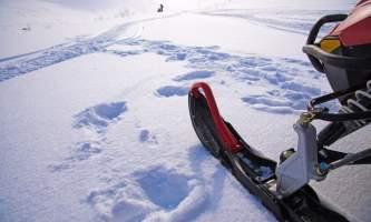 Alaska Wildlife Guide Snowmobiling in Alaska new size2019