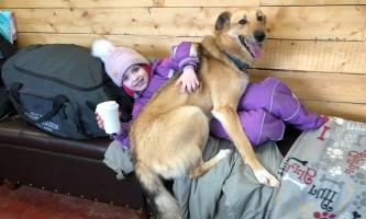 Liz Raines Failor IMG 9281 alaska alaskan husky adventures