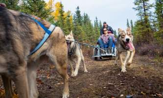 AHA Cart Ride 1 alaska untitled