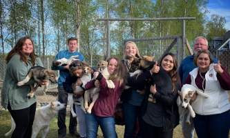 Liz Failor Group with puppies alaska alaskan husky adventures
