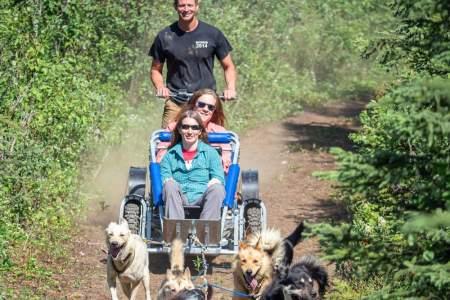 Alaskan Husky Adventures