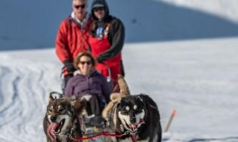 Alpine air dog sledding Alpine Air Dog Sledding Seward PC Taylor Hutchins2019