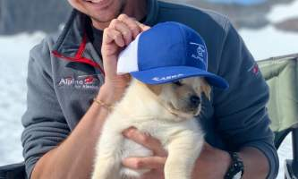 Alpine air dog sledding Alpine Air Dog Sledding Pilot Ty with puppy2019
