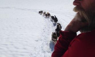 Alpine air alaska girdwood glacier dogsledding Peter