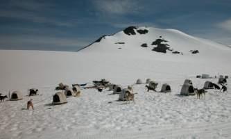 Alpine air alaska girdwood glacier dogsledding Alpine Air Supplied Dogmushing 005 Alaska Channel
