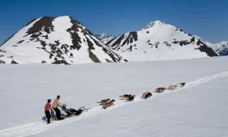 Alpine air alaska girdwood glacier dogsledding Danny Lehman 003 Danny Lehman 505 466 2000 danny dannylehman com