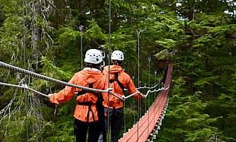 Alaska alpine zipline adventures juneau DSC 1337 alaska zipline adventures