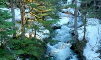 Alaska alpine zipline adventures juneau Fish Creek alaska zipline adventures