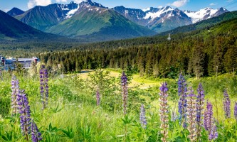 RKP Alyeska summer socialdistance alaska hotel alyeska girdwood resort summer mountain biking hiking trails