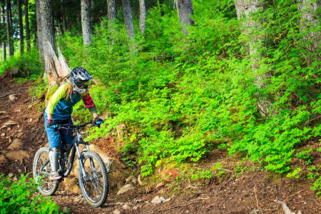 Alyeska Resort Summer Mountain Biking & Hiking Trails