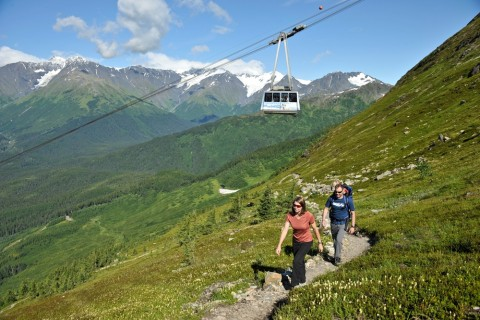 Hike the North Face Trail to the top of Mt. Alyeska, and take the scenic tram ride back down for free