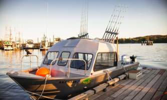 2015 boats 202019