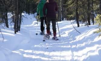 IMG 2193 alaska borealis basecamp fairbanks