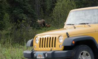 2017 jeep photo edited 612019