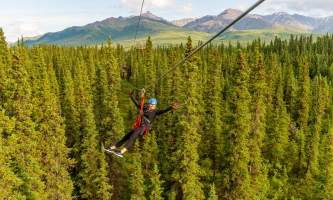 2018 Denali Park Zipline 282019