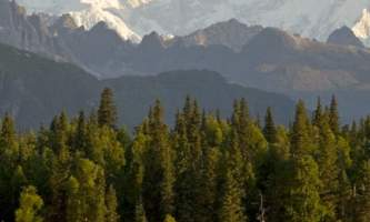 Alaska 2 Denali Southside River Guides