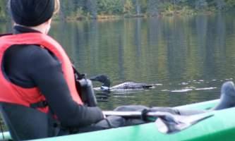Alaska 30 Denali Southside River Guides