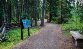 Fairbanks fountainhead wedgewood wildlife sanctuary WW SANC Alaska Org Listing 0003 7 3119 Fnthd Sanctuary 007