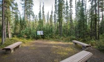 Fairbanks fountainhead wedgewood wildlife sanctuary WW SANC Alaska Org Listing 0008 7 3119 Fnthd Sanctuary 131