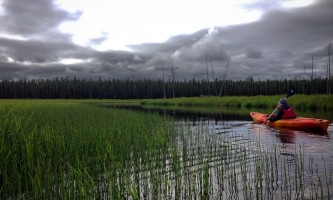 Great alaska adventure bucket list tripmatt Moose paddler and grass