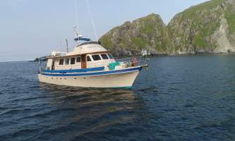 Homer ocean charters Outer Limits