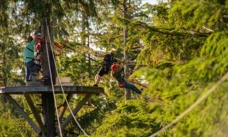 Zipline KTN Rainforest Zip Pull In