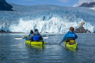Liquid adventures aialik glacier wildlife viewing kayaking 2