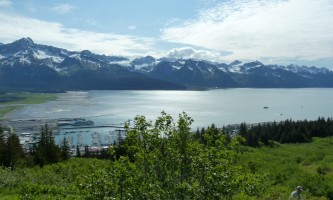 Exit glacier guides nature hike 9