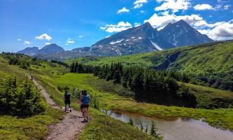 Exit glacier guides nature hike 6