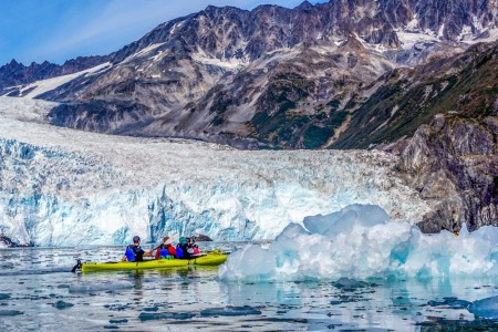 Liquid Adventures – Wildlife Cruise & Kayak
