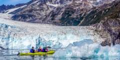 Liquid Adventures – Wildlife Cruise & Kayak
