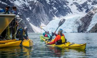 Alaska ANWE0009 aialik northwestern wildlife kayaking explorer