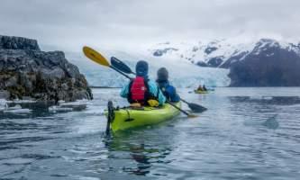 Alaska Aialik Wildlife Kayaking0005 Aialik Glacier Wildlife viewing and Kayaking