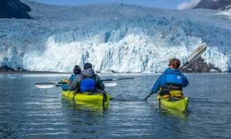Alaska Aialik Wildlife Kayaking0023 Aialik Glacier Wildlife viewing and Kayaking