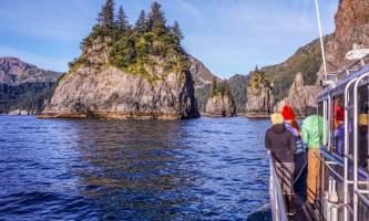 Alaska DSC05816 Aialik Glacier Wildlife viewing and Kayaking