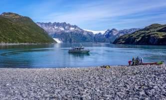 Alaska DSC06062 Aialik Glacier Wildlife viewing and Kayaking