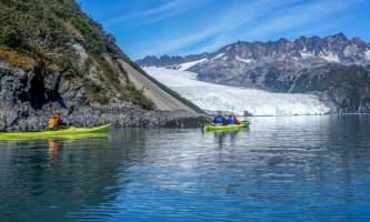 Alaska DSC06102 Aialik Glacier Wildlife viewing and Kayaking