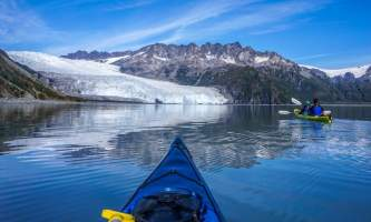 Alaska DSC06112 Aialik Glacier Wildlife viewing and Kayaking