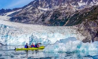Alaska DSC06173 Aialik Glacier Wildlife viewing and Kayaking
