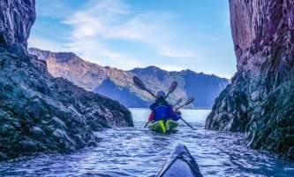 Alaska DSC06335 Aialik Glacier Wildlife viewing and Kayaking