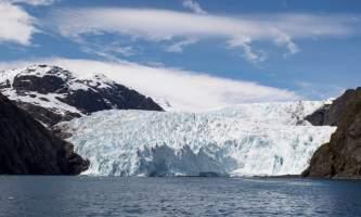 Major marine kenai fjords tours 4