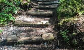 mindfulness-rainforest-treks-ketchikan-steps