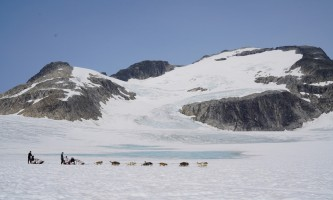 Northstar trekking glacier dog sled adventure DSC01046