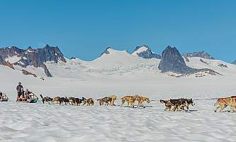 Northstar trekking glacier dog sled adventure 20190627 Northstar 1092 Edit